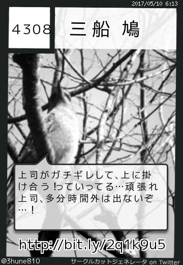 三船 鳩さん(@3hune810)のサークルカット
