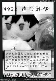 きりみやさん(@kirimiya_blue)のサークルカット